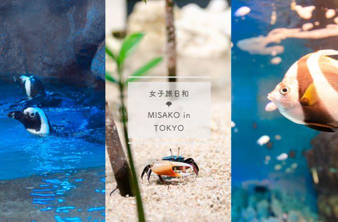【東京景點】池袋 Sunshine City,都市叢林裡的夢幻陽光水族館